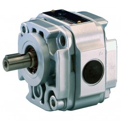 Bosch Rexroth Internal Gear Pump Type PGF