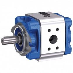 Bosch Rexroth Internal Gear Pump PGM-4X